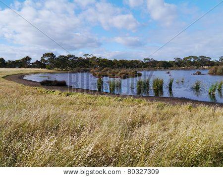 A landscape on Kangaroo island