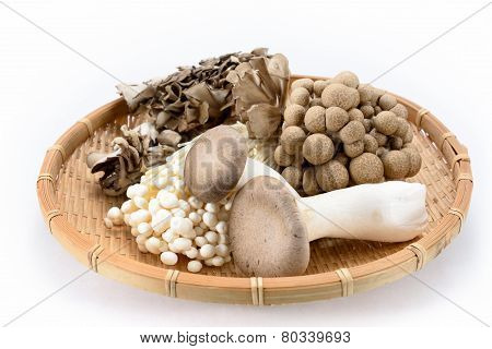 Assorted Of Mushrooms