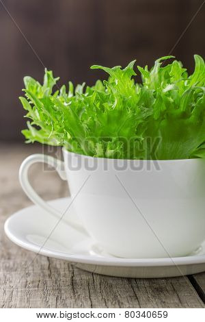 Freshness green lettuce salad in white cup.