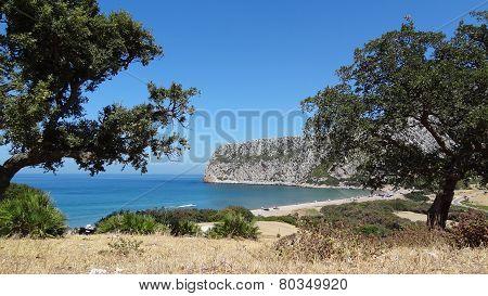 Charming beache ( Oued el Marsa )