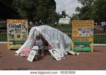 Anti-nuclear Protest Near The White House