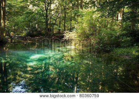 Beiului's eye lake - Ochiul Beiului