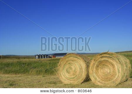 Farmland bales