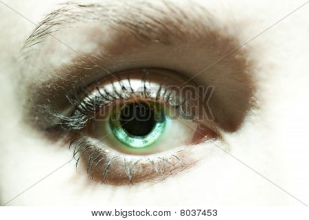 Female Blue Eyes With Dilated Pupils Close