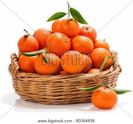 Meny Tangerines In A Basket