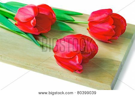Three Red Tulips On A White Background.