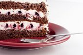 picture of marsala  - tasty cake on a marsala color plate on white table - JPG