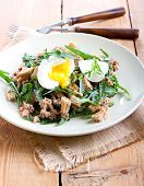 picture of rocket salad  - Tuna and rocket salad on plate - JPG