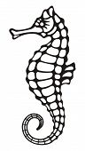 image of seahorses  - Stylized black and white icon of a seahorse on white background - JPG