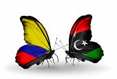 picture of libya  - Two butterflies with flags on wings as symbol of relations Columbia and Libya - JPG