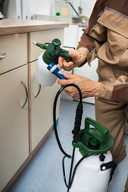 pic of pest control  - Close-up Of Pest Control Worker Hand Holding Sprayer For Spraying Pesticides On Cabinet ** Note: Shallow depth of field - JPG