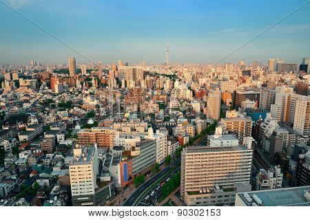 Tokyo urban skyline rooftop sunset view, Japan.