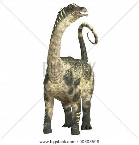 Antarctosaurus Over White