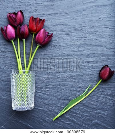 Beautiful violet tulips in glass vase on gray background