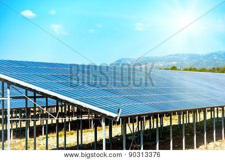 Many Solar Panels