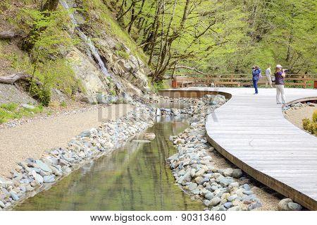 Sochi. A Settlement Is The Krasnaya Polyana. Waterfall