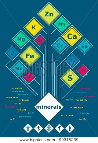 Poster Of The Minerals In Flat Style