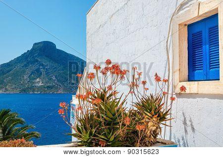 Blue wooden Greek window flowers Kalymnos, Greece