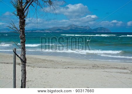 Sunny beach with waves and turquoise ocean