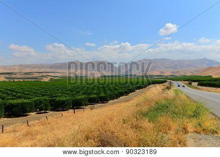 California Route 178