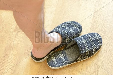 Pair Of Slippers