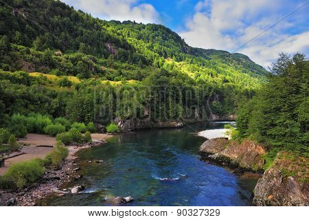 Quick creek with cold and clean water. The creek flows through  dense coniferous forest