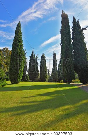 The most romantic landscape park garden in Italy. Captivating green grass lawn surrounded by groves. The shadows of the cypresses slender gently fall on the green meadows