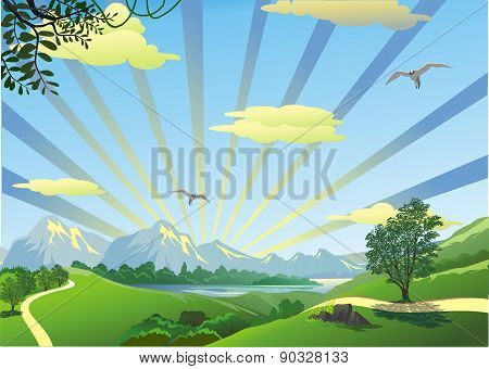 Landscape - Morning On A Forest Path In Vector