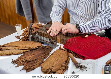 Man Making Cigars