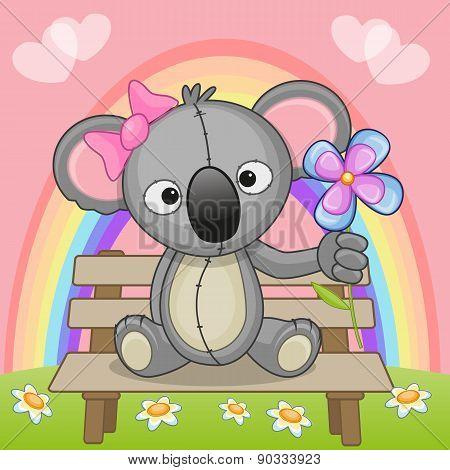 Koala With Flower
