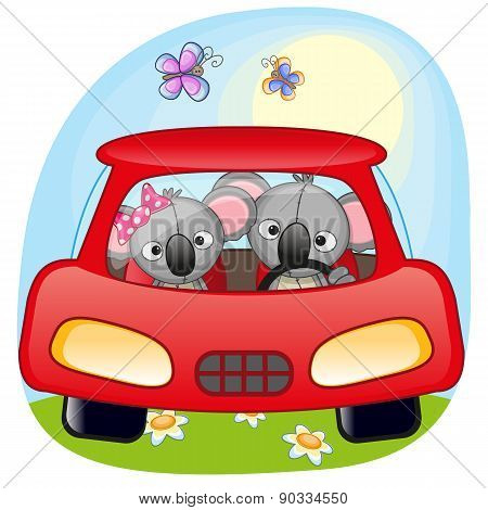 Two Koalas In A Car