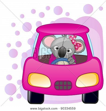 Koala Girl In A Car