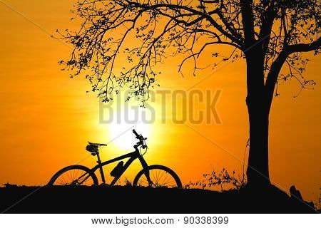 Mountain Bike Silhouette In Sunrise..