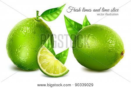 Fresh limes with leaves and lime slice. Vector illustration