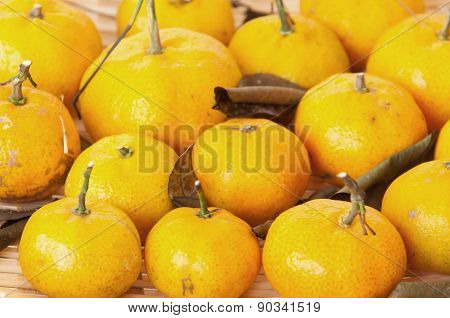 Tangerines In A Basket
