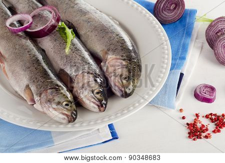 Rainbow Trouts On  White Plate.