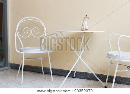 White Chair And Desk At The Corner