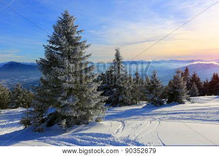 Nice winter scene in mountains, Slovakia