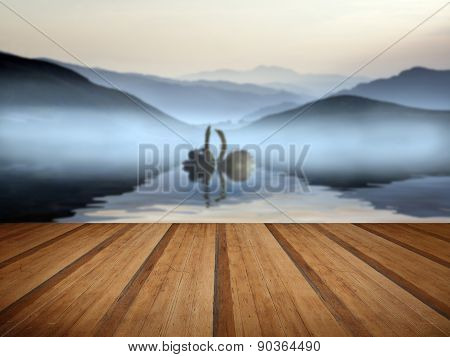 Beautiful Romantic Image Of Swans On Misty Lake With Mountains In Background  With Wooden Planks Flo