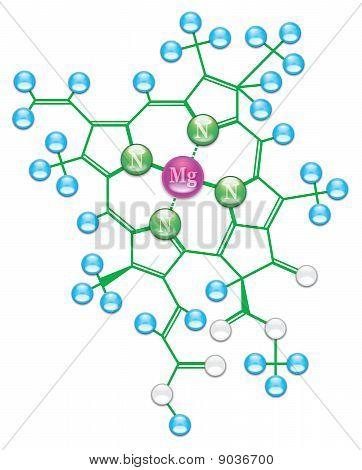 Chlorophyll formula II