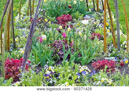 Pretty spring flowerbed