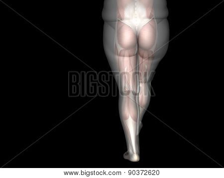 Concept or conceptual 3D fat overweight vs slim fit diet with muscles young man isolated on background