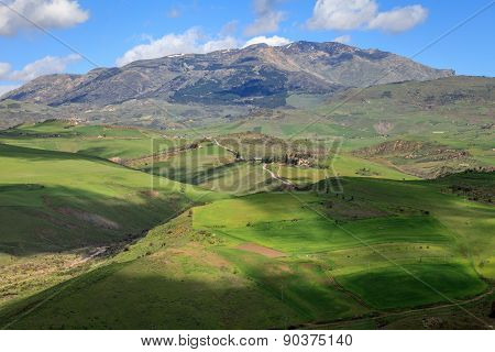 Green Meadows And Mountains