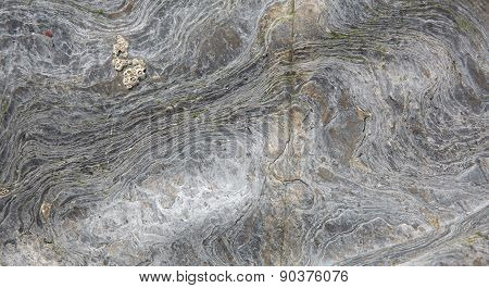 Rock background texture with swirl and natural pattern and design