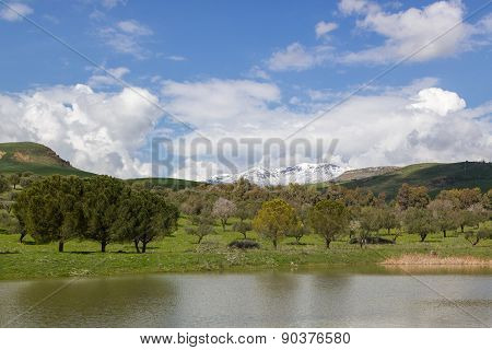 Pond, Trees And Mountain