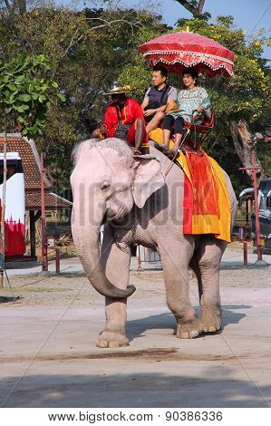 Elephant Ride In Asia
