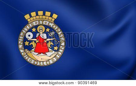 Flag Of Oslo, Norway.