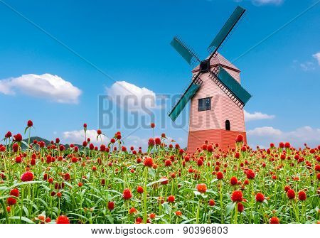 Globe Amaranth Flower And Windmill And Blue Sky Background