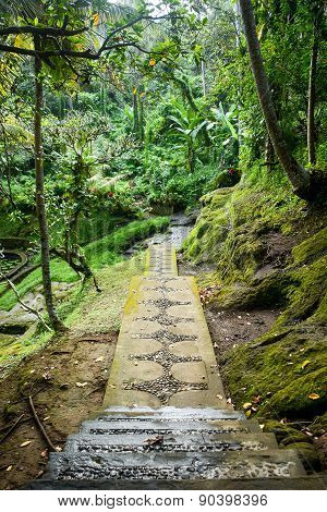 Beautiful Walkway In Balinese Garden, Bali, Indonesia