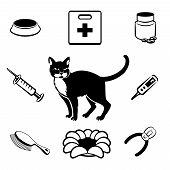 pic of veterinary clinic  - Cat veterinary clinic icons set - JPG